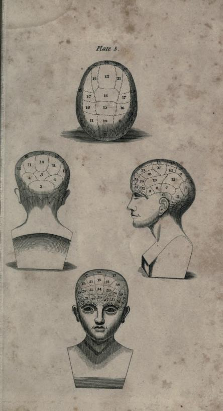 "Phrenological diagram taken from ""Manual of phrenology: being an analytical summary of the system of Doctor Gall, on the faculties of man and the functions of the brain : translated from the 4th French ed. Philadelphia: Carey, Lea & Blanchard, 1835.""  Source:  University of Alberta Libraries."